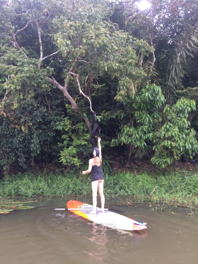 Bucket List - Feed a monkey from a SUP Board in Panama