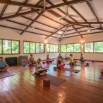 Panama Yoga Studio set in the Jungle.