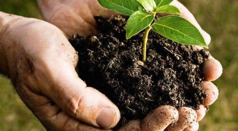 compostage autonome pour établissements touristiques