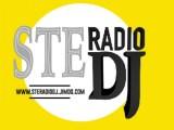 steradiodj italiaccessibile 520x4001 - III^edizione OFF-ROAD & OUTDOOR - FREEWHITE & FIAT AUTONOMY - 01-05 e 07-11 settembre 2014 - ISCRIZIONI APERTE