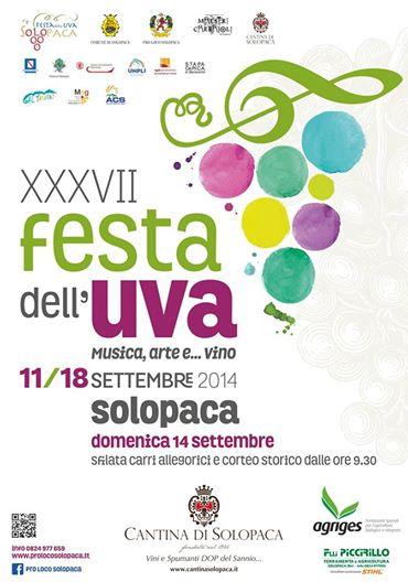 festa uva solopaca 2014 - Festa dell'Uva di Solopaca (Bn) accessibile alle persone con disabilità