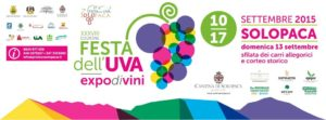 festa delluva 300x111 - I meravigliosi carri della Festa dell'Uva di Solopaca (Bn) accessibili a Tutti