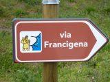 via francigena italiaccessibile scaled - Dora - Una Voce per un Aiuto- Trasmissione del 3 Luglio 2016