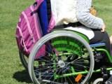buona scuola disabili - Dora una Voce per un Aiuto - Puntata del 29 gennaio 2017