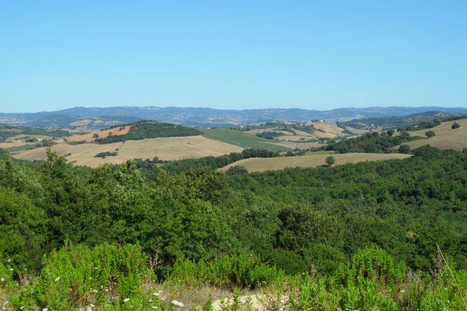 Le colline tra Manciano e Capalbio