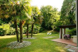 Grote prive-tuin met palmbomen en volop schaduw