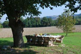 Sfeervol eten onder de oude eikenboom