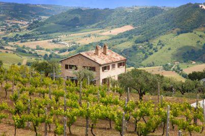 Het huis gezien vanuit de wijngaarden de aan de achterkant liggen