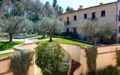 Tuin van de borgo met olijfbomen