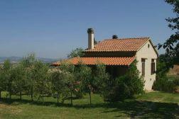 Het huis met het terras boven en de tuin met olijfbomen