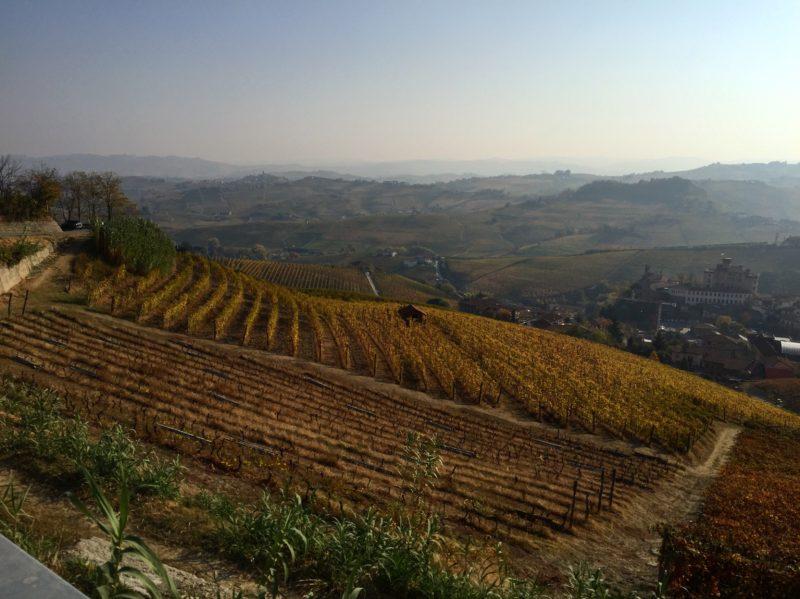 italiainpiega-pieghe meravigliose-itinerari-moto-nord-italia-piemonte 1-langhe 1