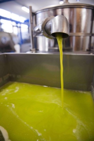 #5 Extra Virgin Olive Oil