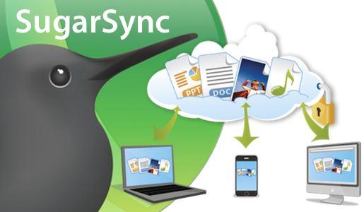 sugarsyncintro SugarSync, i nostri documenti sulle nuvole.