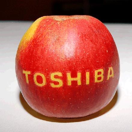 toshiba apple 001 Apple vuole costruire una fabbrica con Toshiba, per rispondere alla grande richiesta di iPhone