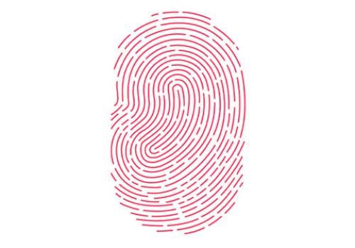 iphone touch id logo 620x332 Questo 2014 per Apple sarà una grande svolta!