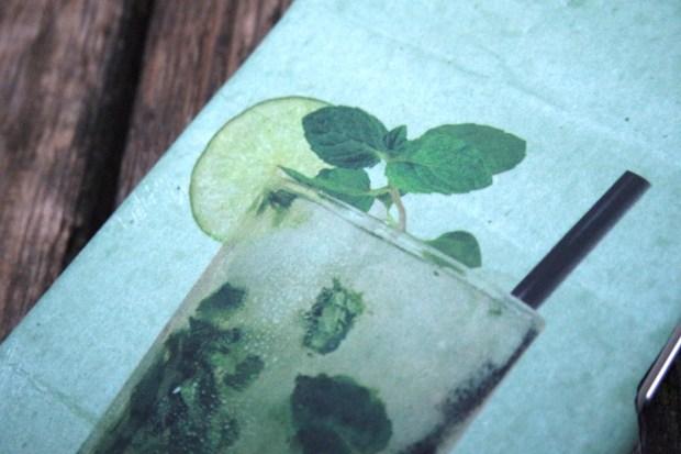 FlickFlock5 620x413 Flick & Flock, Stasera mi berrei... Una nuova collezione di Cover per iPhone 6, ispirata ai più famosi Cocktail