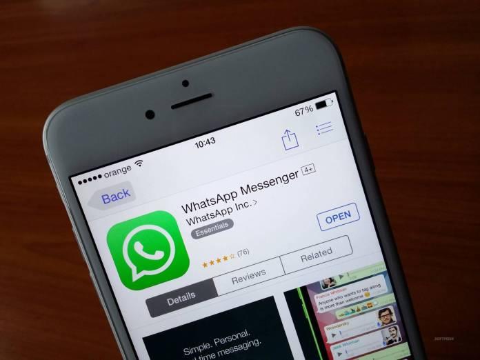 whatsapp WhatsApp, chiamate vocali anche su iOS, ecco quando