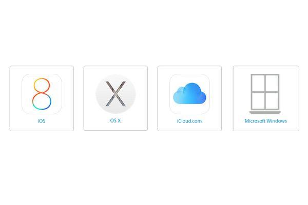 Apple Logo Windows