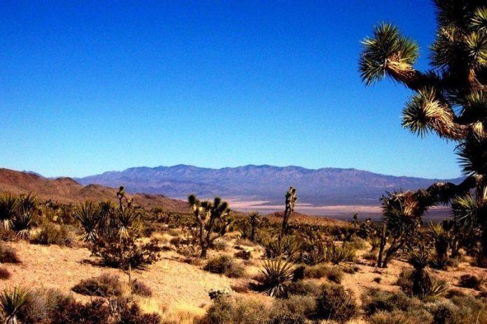 italiamac mojavedesert 800x533 macOS 10.14 potrebbe prendere il nome di Mojave, Sequoia, Ventura o Sonoma