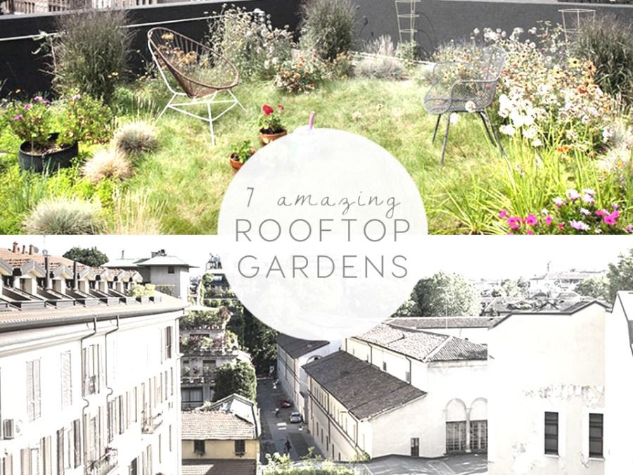 rooftop gardens garden design best rooftops italianbark interior design blog