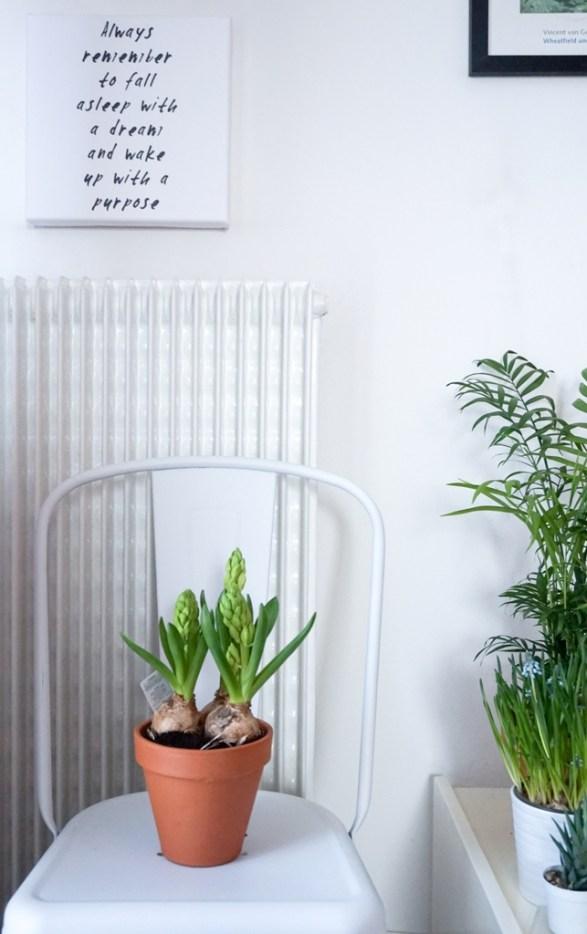 spring-restyling-green-corner-officina-essenze-italianbark-34