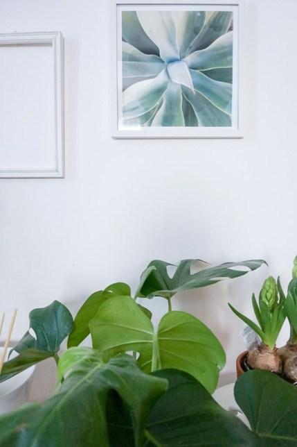 spring-restyling-green-corner-officina-essenze-italianbark-8