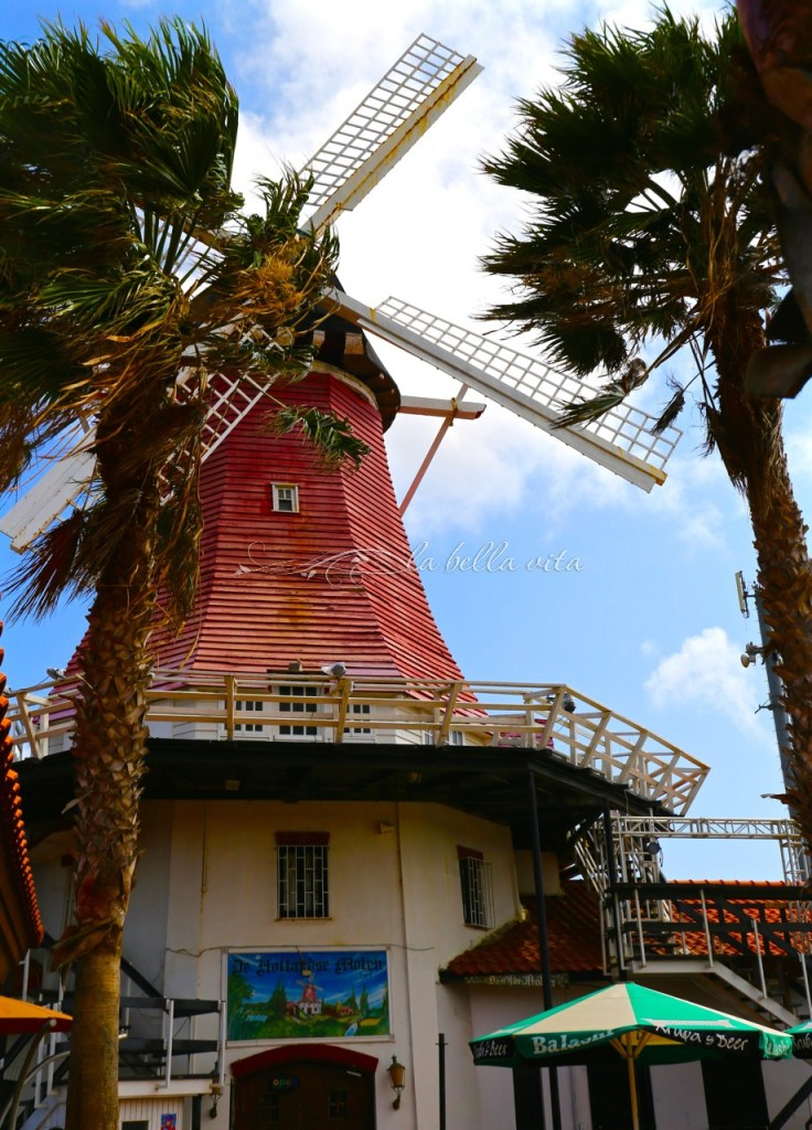 what to see do in Aruba color and architecture