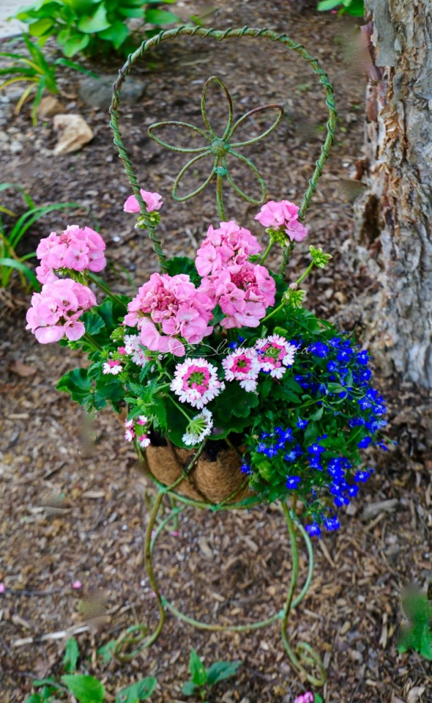 Spring Flowers in a Southern Garden