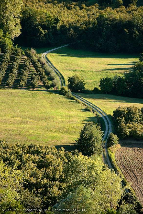wedding in Langhe vineyards Piedmont