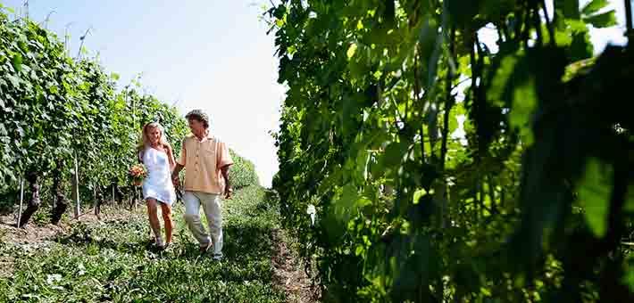 elope-in-Barbaresco-vineyards-Piemonte-countryside-Italy