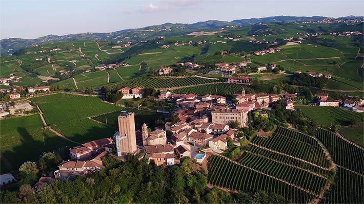 barbaresco-vineyard-wedding