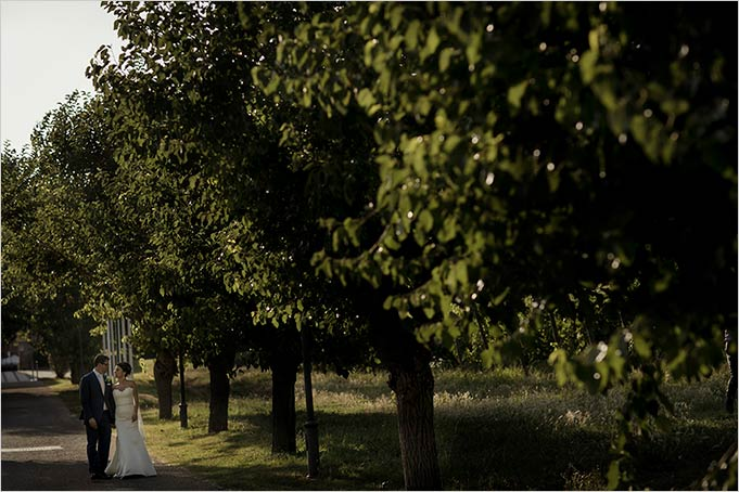 jewish_wedding_in_piemonte_vineyards_italy