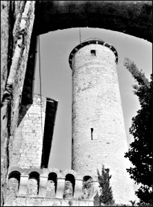 Find images # 10-Brescia 1953 Mirabella Tower