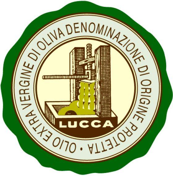 OLIO LUCCA DOP