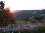 Casa San Nicola Holiday House Le Marche Italy Landscape