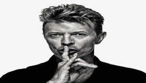 Bowie_Gavin_Evans - 350X200