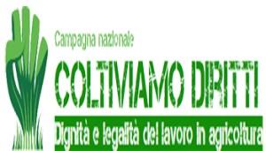 coltiviamodiritti-campagna-3-titolo - www-coltiviamodiritti-altervista-org - - - - - 350X200