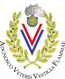 logo-associazione-v-v-e-e-alamari-in-congedo