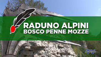 """""""PENNE MOZZE"""" SENSO DI PATRIA, SENSO DI STATO. <BR> di Fulvio Biocca"""