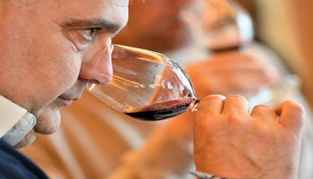 Vino Italiano Boom, +6%