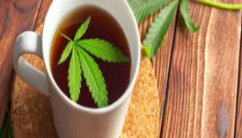 Consiglio Superiore della Sanità, stop alla vendita di prodotti di cannabis light