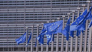 Elezioni europee 2019, quando si vota? Ecco la data in Italia e negli altri paesi