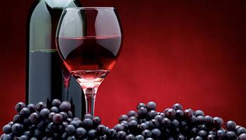 """A Osaka un seminario dedicato al """"vino buono"""" italiano"""