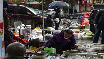 """""""A Wuhan hanno nascosto gravità Covid"""", l'accusa dello scienziato"""