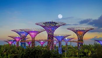 Singapore, il governo è green