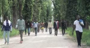 migranti accoglienza cascina pisa