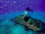 E' dedicato al mondo sommerso e alla componente subacquea il calendario 2021 che la Guardia costiera ha presentato oggi a Roma.#Mondosommerso #GuardiaCostiera #Calendario2021