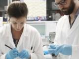 La Commissione medico-scientifica di Fondazione Telethon seleziona i vincitori del bando progetti 2020: finanziate 45 ricerche su 40 malattie genetiche.