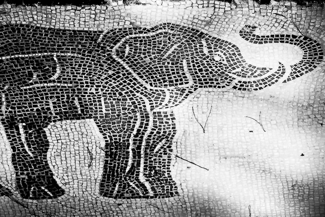 Mosaics Small Wonders From Ostia Antica S Great Past