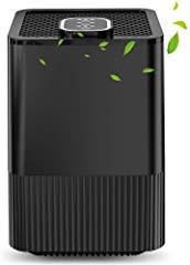 Offerta in evidenza - Purificatore d'aria con filtro HEPA reale e ionizzatore, filtrazione a 4 strati e 3 funzioni timer, elimina polvere, fumo, batteri, pet dander, polline per casa e ufficio